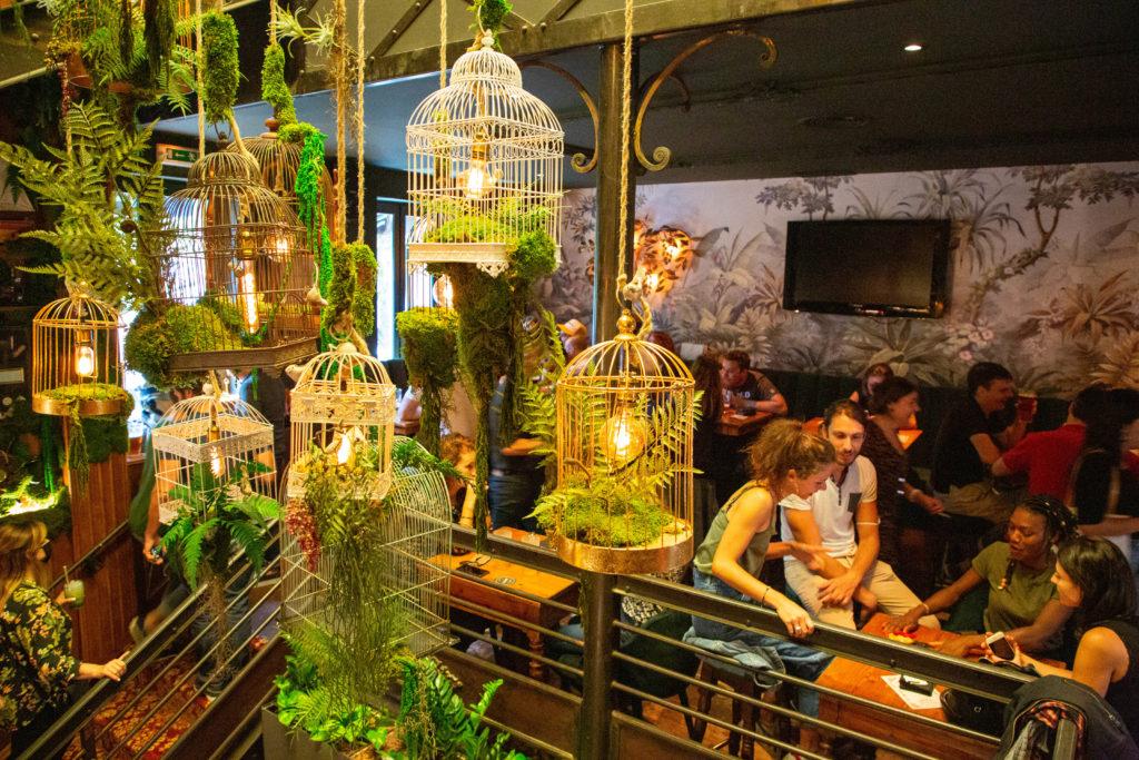 the botanist pub bar soiree ouverture opening toulouse etages